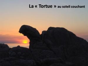 "La ""Tortue"""