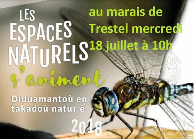 Trévou-Tréguignec  à la découverte du marais de Trestel avec «les espaces naturels s'animent»  le mercredi 18 juillet à 10h