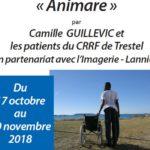 Trévou-Tréguignec Le CRRF (Centre de Rééducation et de Réadaptation Fonctionnelles) ouvre ses portes au public pour une exposition de Camille Guillevic. à découvrir du 17 octobre au 30 novembre
