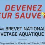 Trévou-Tréguignec En février 2019 un stage pour préparer au Brevet National de Sécurité et Sauvetage Aquatique Tarif préférentiel pour les Trévousiens; il est déjà possible de s'inscrire…