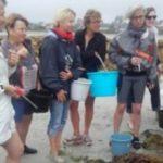 Régine QUÉVA et TOUN  animent des ateliers découverte des algues et des ateliers de cuisine aux algues; dates et  horaires dans l'article.  Pensez à vous inscrire: prochains ateliers  le 16, le 29  août                 Trévou-Tréguignec