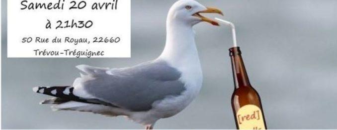 Les (Red) Gulls en concert à l'Élektron au Royau le samedi 20 avril