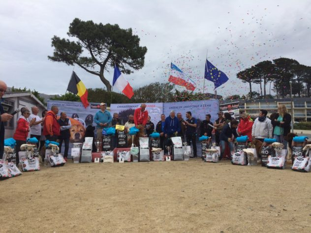 Le Championnat de France de chiens de sauvetage en mer se tenait à Trestel ce week-end…. des chiens pleins de bravoure!  Trévou