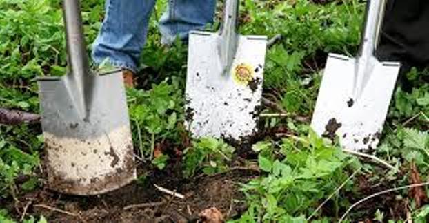 Trévou-Tréguignec  petites parcelles de terre proposées aux jardiniers….
