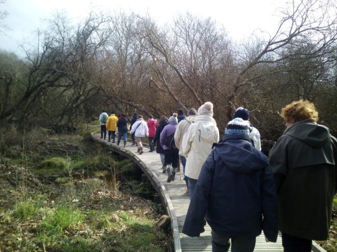 Les espaces naturels s'animent :  visite guidée du Marais de Trestel le 25 août : l'effet papillon