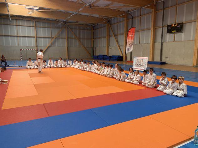 Judo:  cours suspendus