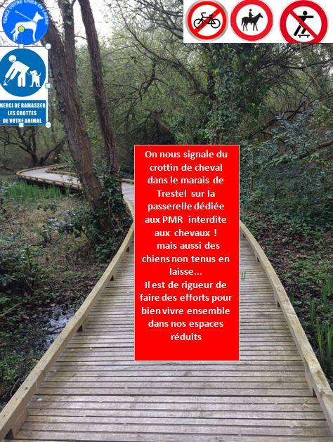 Pour le bien de tous et le respect des PMR et autres utilisateurs des passerelles du marais de Trestel en Trévou-Tréguignec, respectez quelques interdictions évidentes… (mais pas pour tous..)