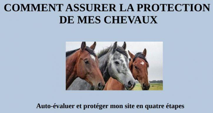 La gendarmerie nous informe : prévention des équidés
