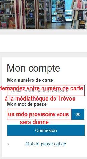 Le catalogue de la bibliothèque de Trévou-Tréguignec est en ligne. Demandez vos identifiants pour réserver de chez vous..