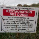 La protection des dunes et du talus dunaire, l'affaire de tous… panneaux informatifs  réinstallés