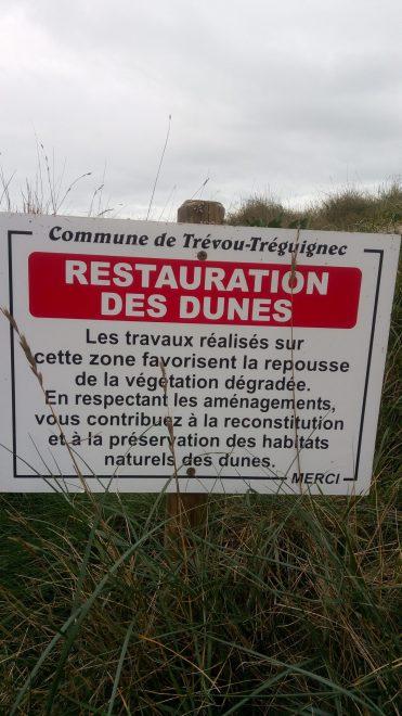 La protection des dunes et du talus dunaire, l'affaire de tous…