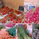 La Ferme Dolmen & Potager, vente directe de fruits et légumes Bio. Magasin ouvert le mardi et le vendredi de 16h à 19h